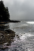 Port Renfrew Seascape