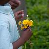 Flower Pickin' :