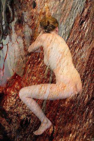 Shimmering Lady - Grace Munday
