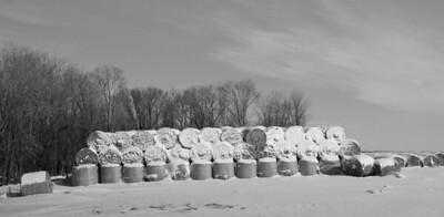 Farmington, MN. ©JLCramerPhotography 2009