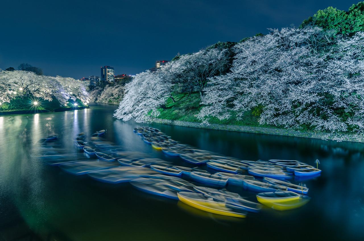 Chidorigafuchi Boats At Night
