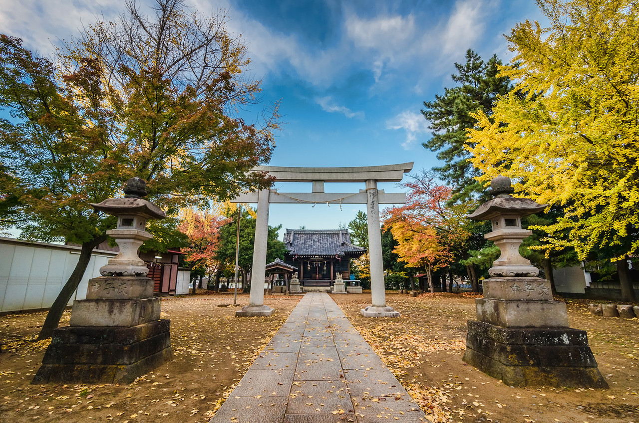 The Japanese Colors of Fall
