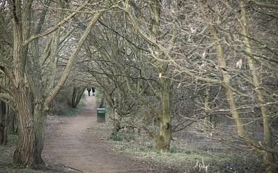 Brent Reservoir / Welsh Harp Open Space, London
