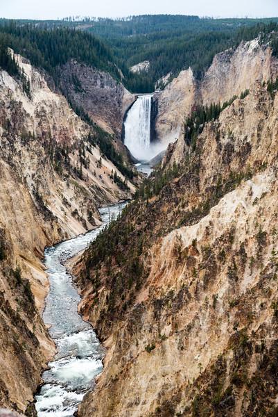 Lower Falls, Grand Canyon of Yellowstone area