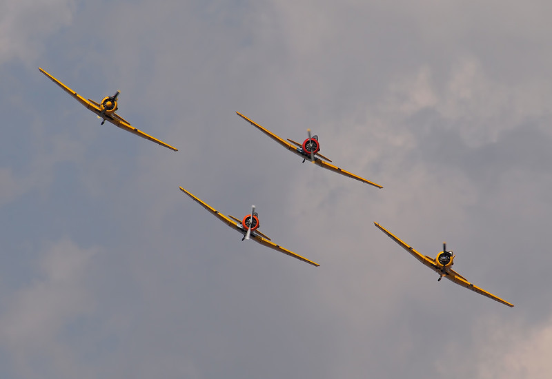 T-6 Formation at AirVenture - 30 July 2011