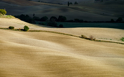 Abstract view of yellow and brown hills of Tuscane, autumn