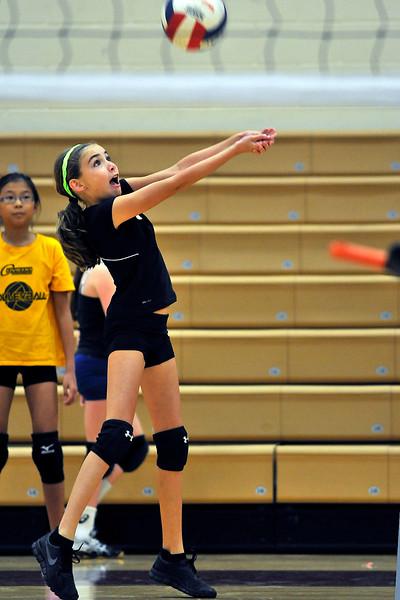 9 2 14 Volleyball 178