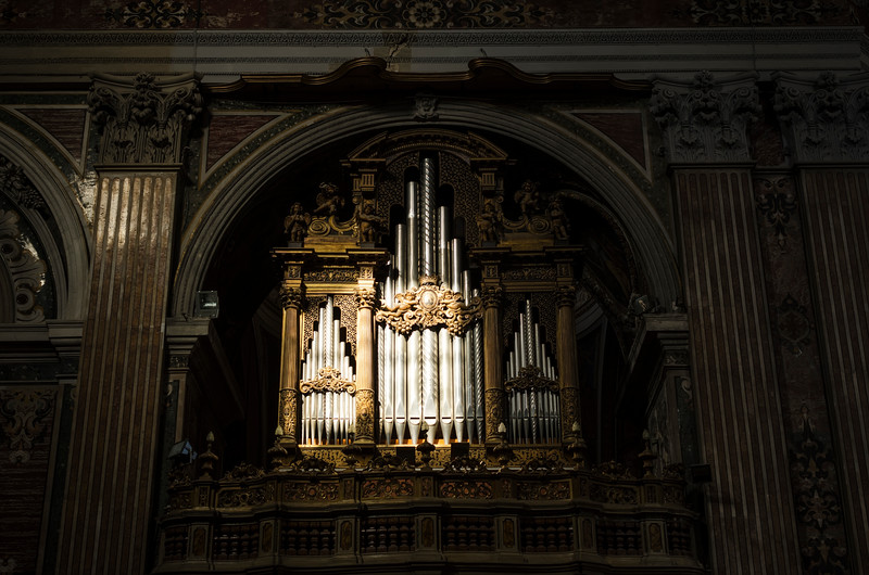 Spotlight on the organs