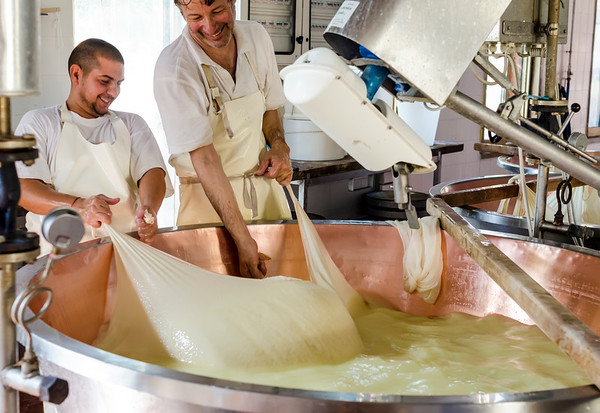 The joy of making Parmigiano Reggiano