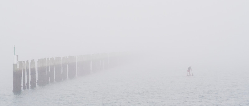 Around twice a year the city is blanketed by thick, lingering fog. it does not stop Kiwis from outdoor activities.