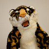 IMG_0052 Tiger
