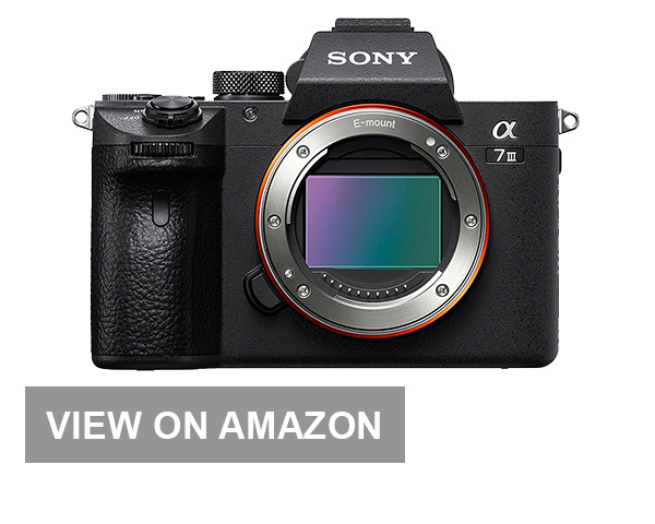 Sony A7 Travel Camera
