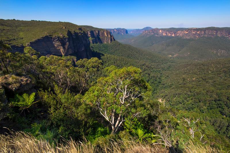 Blue Mountains Overlook 2