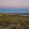 Ocean Sand Dunes