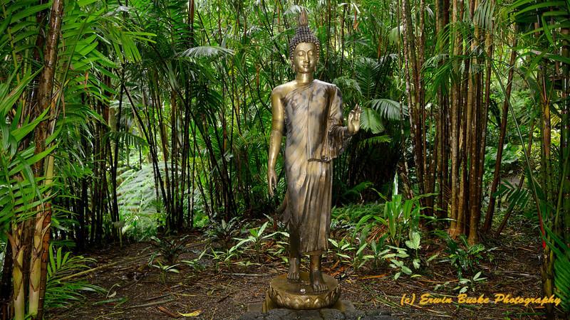 Buddha at the Bamboo Garden