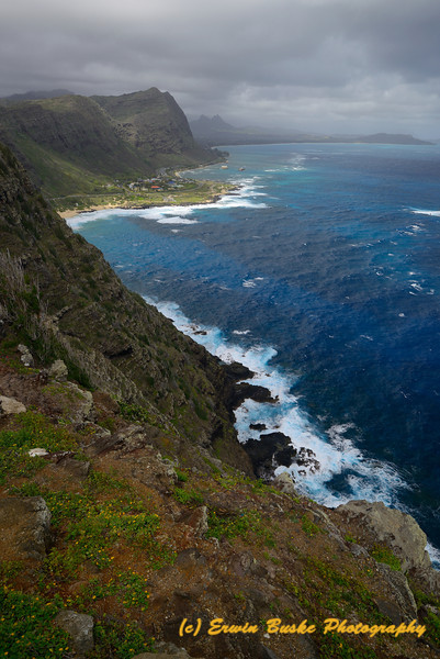 East Windward Shore Oahu