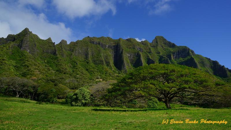 Kualoa Ranch Oahu