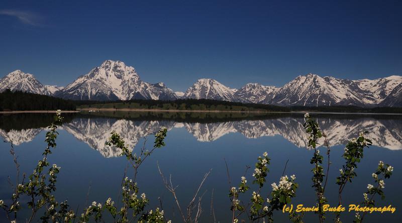 Jackson Lake Grand Tetons