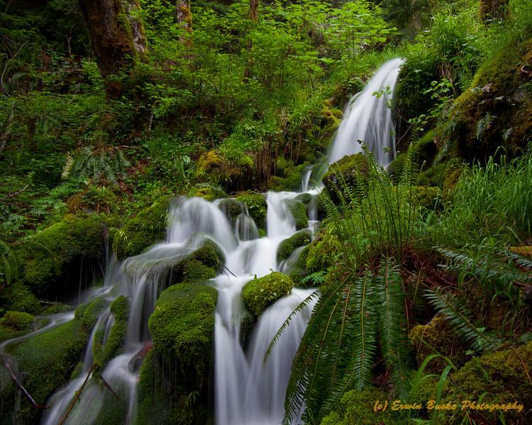 Little Kamikaze Waterfall