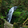 Coal Creek Fall Cougar Mountain