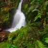 Talus Loop Waterfall