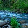 Talor River