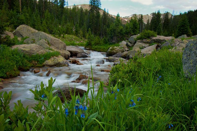 Porcupine Creek 2
