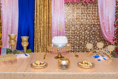 Surbhi & William's Engagement Party-17