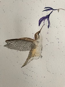 Lady Ruby-Throated Hummingbird by Jackie Louis