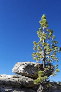 Yosemite_2012_0092