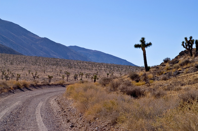 """""""Cross"""" on the road from Teakettle Junction to Ubehebe Crater - Death Valley - California"""