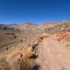 Through the Grapevine Mountains to Titus Canyon - Death Valley - California