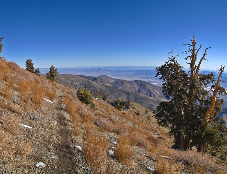 View from Telescope Peak Trail - Death Valley - California