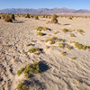 Devils Cornfield - Death Valley - California