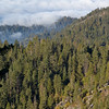 Sequoia NP - View from Moro Rock
