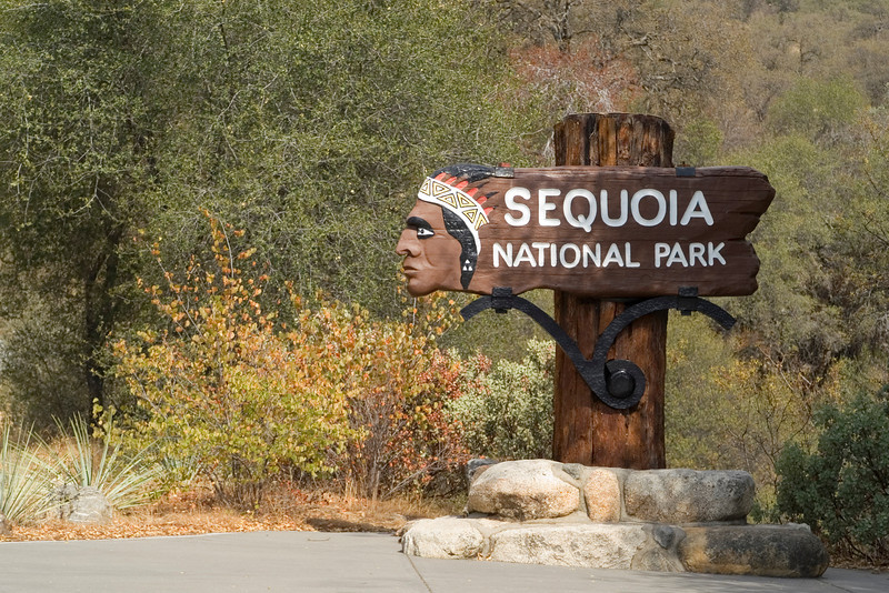 Welcome to Sequoia National Park - California
