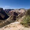On the Observation Point Trail<br /> View on Angels Landing with Cable Mountain on the left