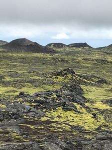 9 Reykjavik July 15-7327