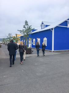 3 NE Iceland  July 19-53 NE Iceland 16