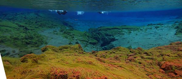 12 snorkel Asgeir -