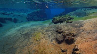 12 snorkel Asgeir -4553
