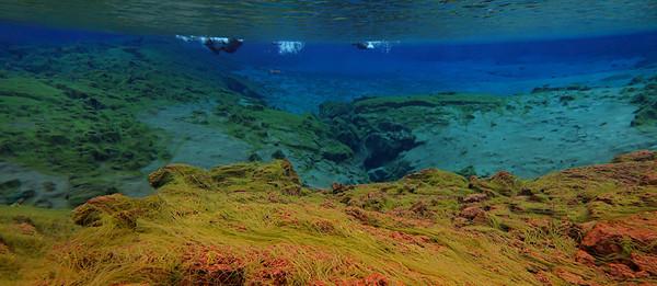 12 snorkel Asgeir -4557 pano