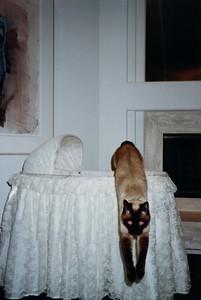 1995 2 Feb Nursery Room 00003