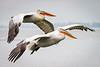 Synchronized soaring