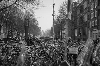 Bikes, Everywhere