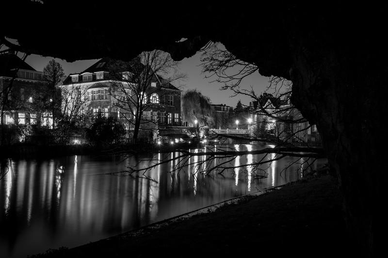 Reflections in Vondelpark