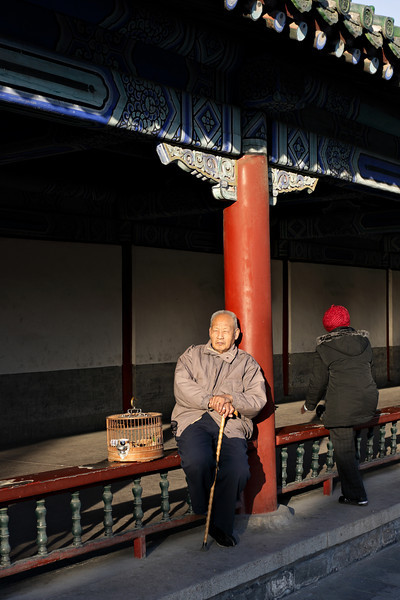Beijing - Enjoying last sun of the day in the Temple of Heaven