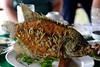 Me Kong delta - Elephant fish