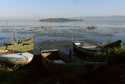 Morning at the shores of lago Trasimeno