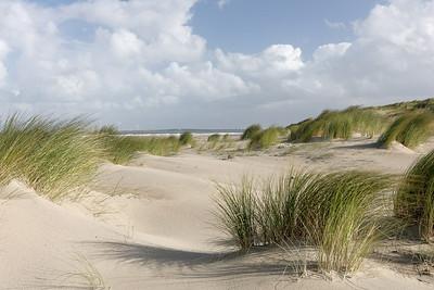 Strand bij Neeltje Jans